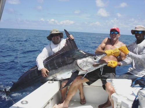 Big 3 Catching a Marlin