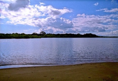 Golfo Dulce at the Mouth of Rio Platanares, Puerto Jimenez