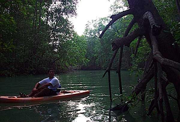 Kayaking in Golfo Dulce