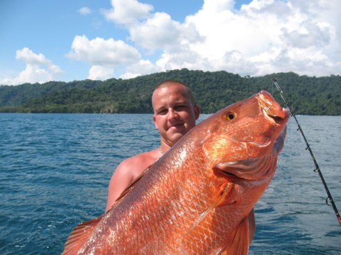 Giant Roosterfish
